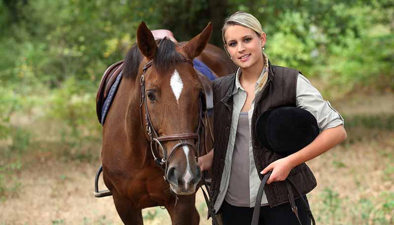 content-horses3