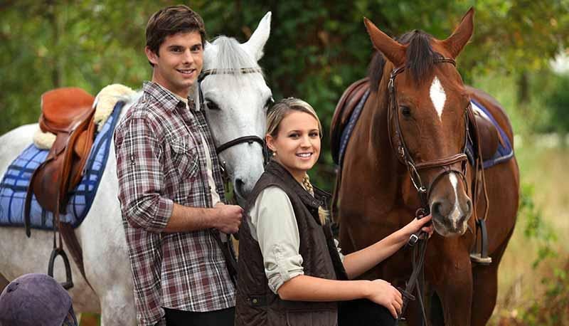 content-horses5